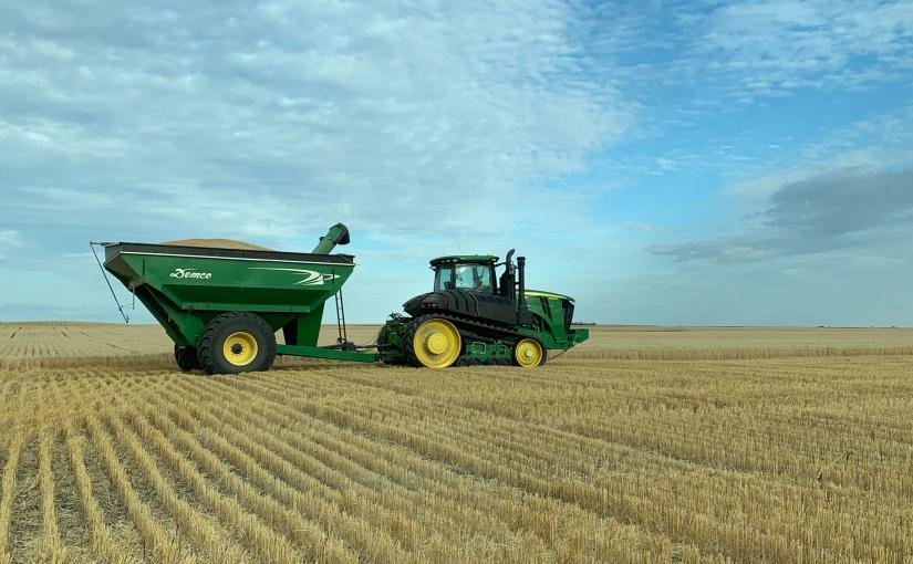 2019 harvest begins